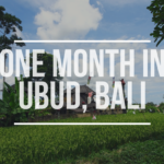 One month in Ubud, Bali, Indonesia